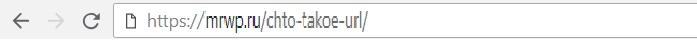 Что такое url wordpress