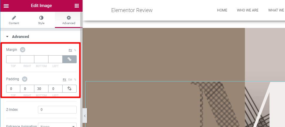 Elementor пользовательские поля и отступы